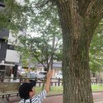 【鹿児島市の放課後等デイサービスWillGoの課外活動】散歩に出かけました。