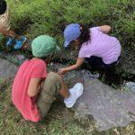 【鹿児島市の放課後等デイサービスWillGoの課外活動】虫採りに行きました。