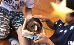 【鹿児島市の放課後等デイサービスWillGoの課外活動】レクレーションに参加しました。
